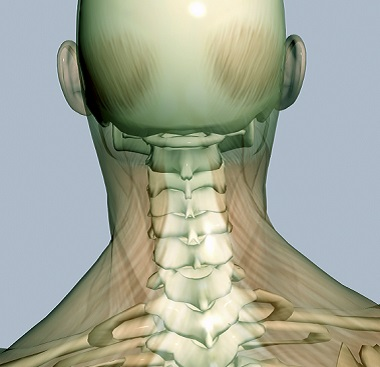 Physiotherapy for Neck (Cervical Spine) Pain